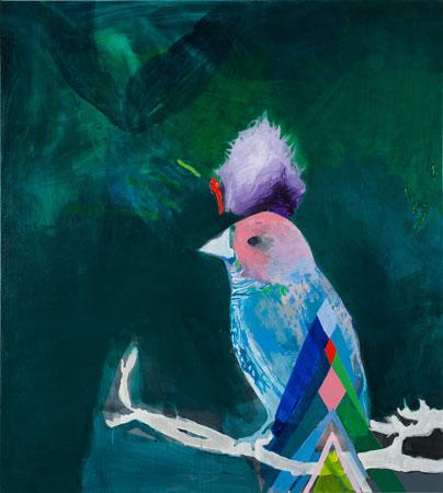 Miranda Skoczec oiseau