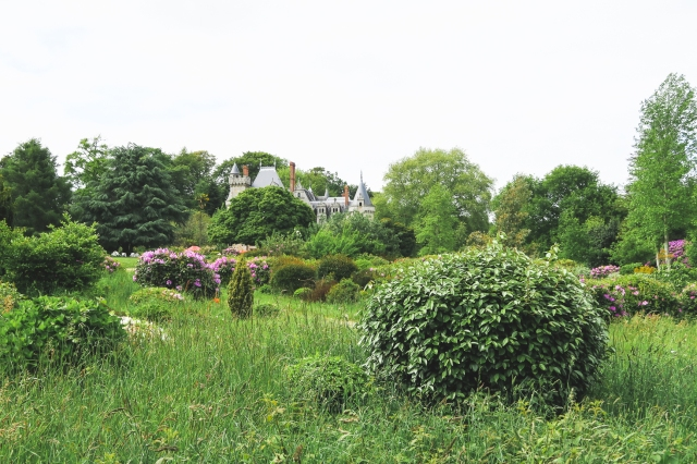 château du Pérennou-4
